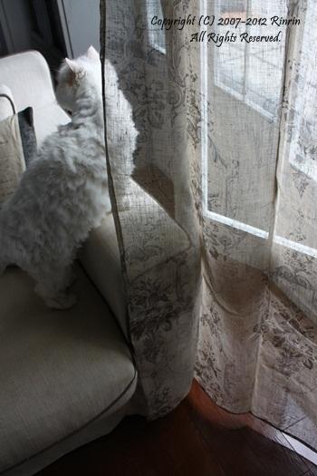 Chicなフレンチリネンのカーテン・・・_e0237680_1115719.jpg
