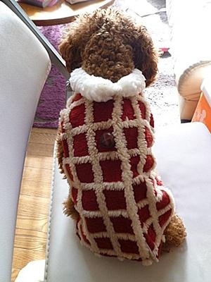 ♪♪さくら♪♪の洋服、2着は作らないとサイズぴったりとは行きません_b0175688_22133341.jpg
