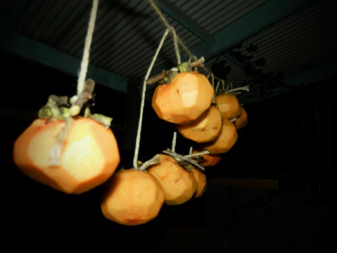 2012渋柿の「干し柿」作り☆_a0125419_18361690.jpg