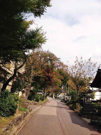 /// 清正公園が少しずつ、秋色になりました ///_f0112434_1742183.jpg
