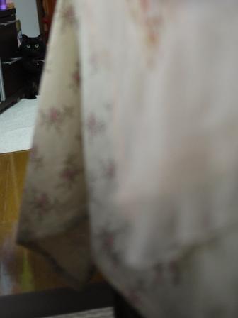 猫のお友だち モコちゃん編。_a0143140_21355518.jpg