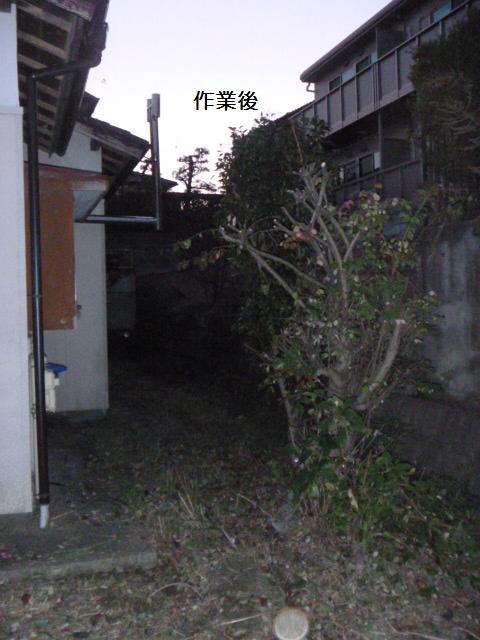 c0186441_1959367.jpg