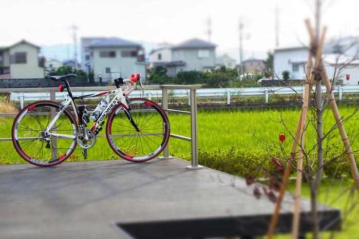 自転車_c0067646_614328.jpg