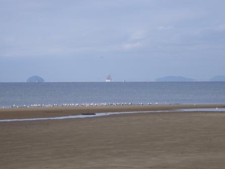 燧灘に 帆船 海王丸  _b0186205_9343254.jpg