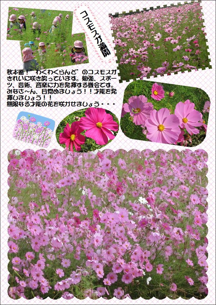 b0022310_16314012.jpg