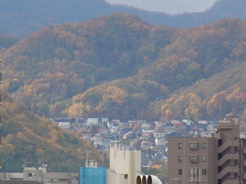 秋一色 (平地から山へ)_c0025115_195302.jpg