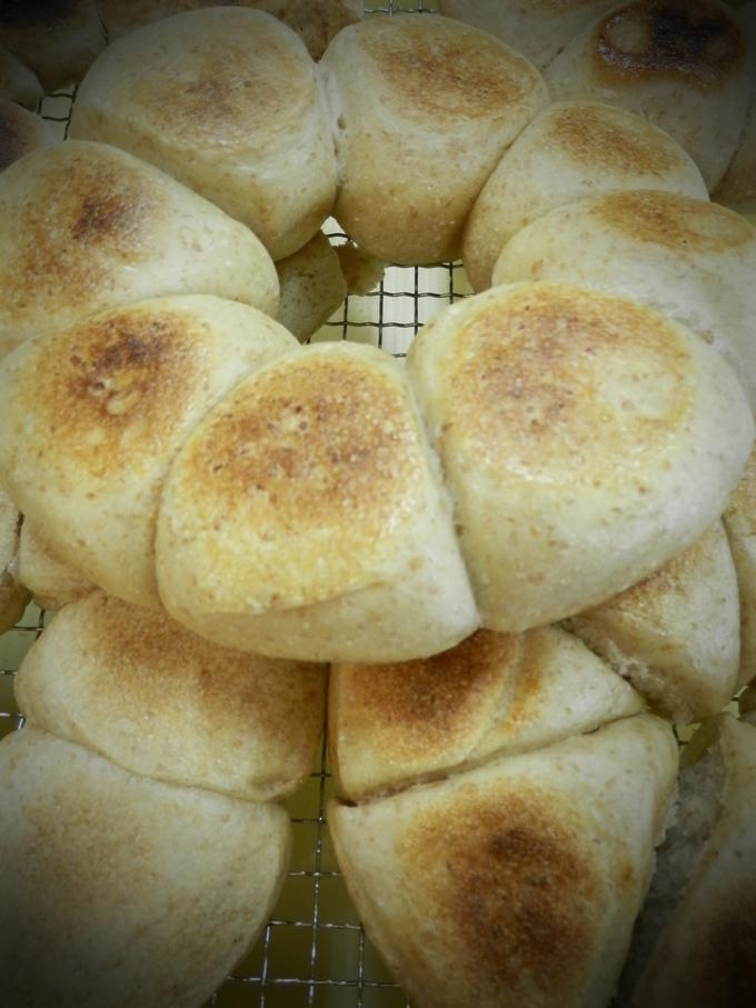 第1回「天然酵母パン」料理教室★_a0125419_19231779.jpg
