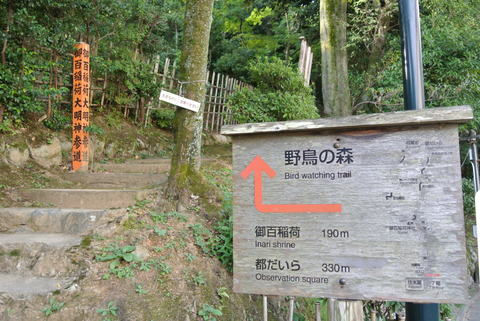 2012.10 京都 Vol.11 ウェスティン都ホテル京都 裏山お散歩_e0219520_15402552.jpg