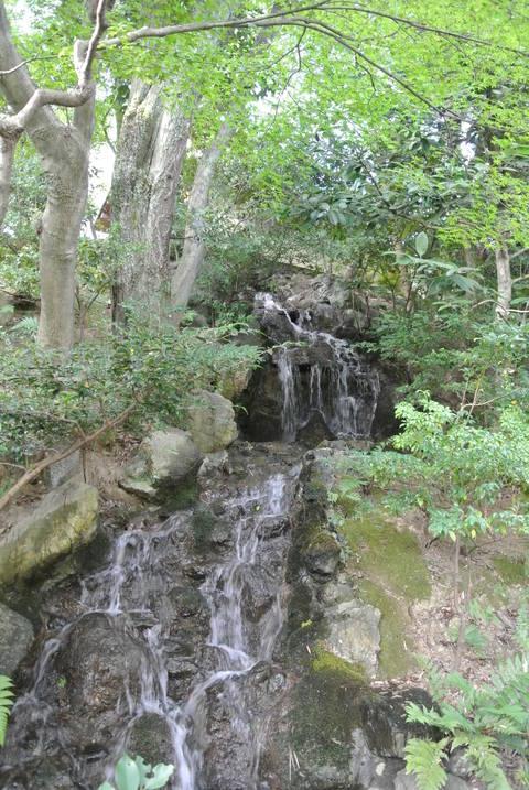 2012.10 京都 Vol.11 ウェスティン都ホテル京都 裏山お散歩_e0219520_16124233.jpg