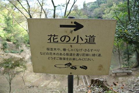 2012.10 京都 Vol.11 ウェスティン都ホテル京都 裏山お散歩_e0219520_1621392.jpg