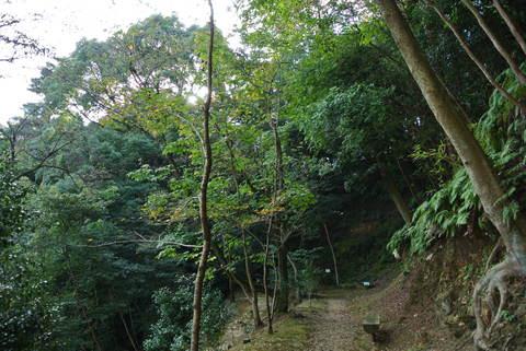 2012.10 京都 Vol.11 ウェスティン都ホテル京都 裏山お散歩_e0219520_1623863.jpg