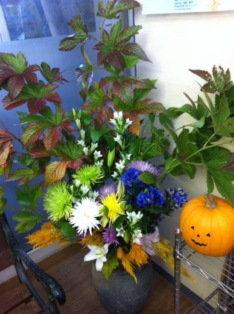 今週のお花とセール情報_a0200423_2234228.jpg