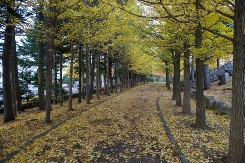 西岡公園へ_c0051132_19161333.jpg