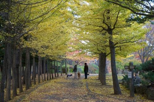 西岡公園へ_c0051132_19181214.jpg