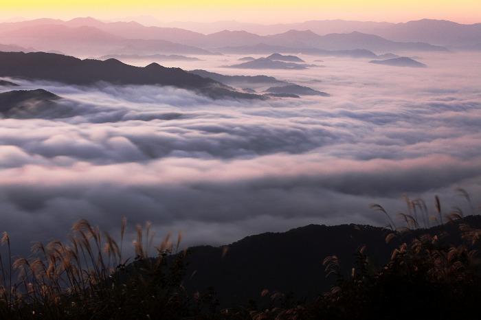 来日岳の雲海_a0294534_21344214.jpg