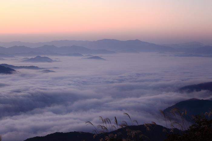 来日岳の雲海_a0294534_21353633.jpg
