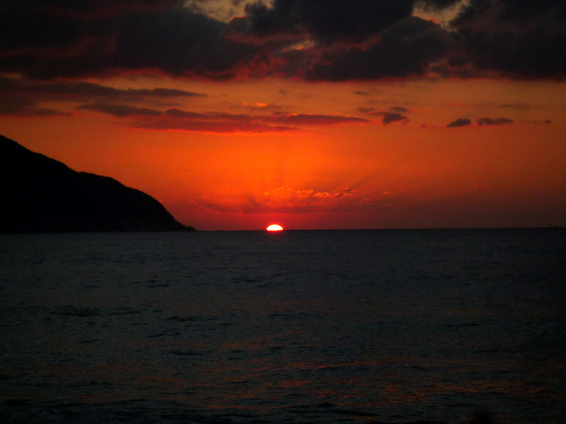 屋久島の旅2_b0216341_22917100.jpg
