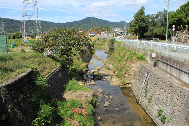 呉地公園・皇帝橋とバス停_b0095061_1157225.jpg