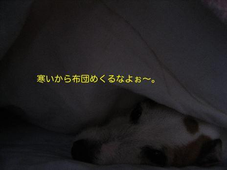 c0179472_1022492.jpg