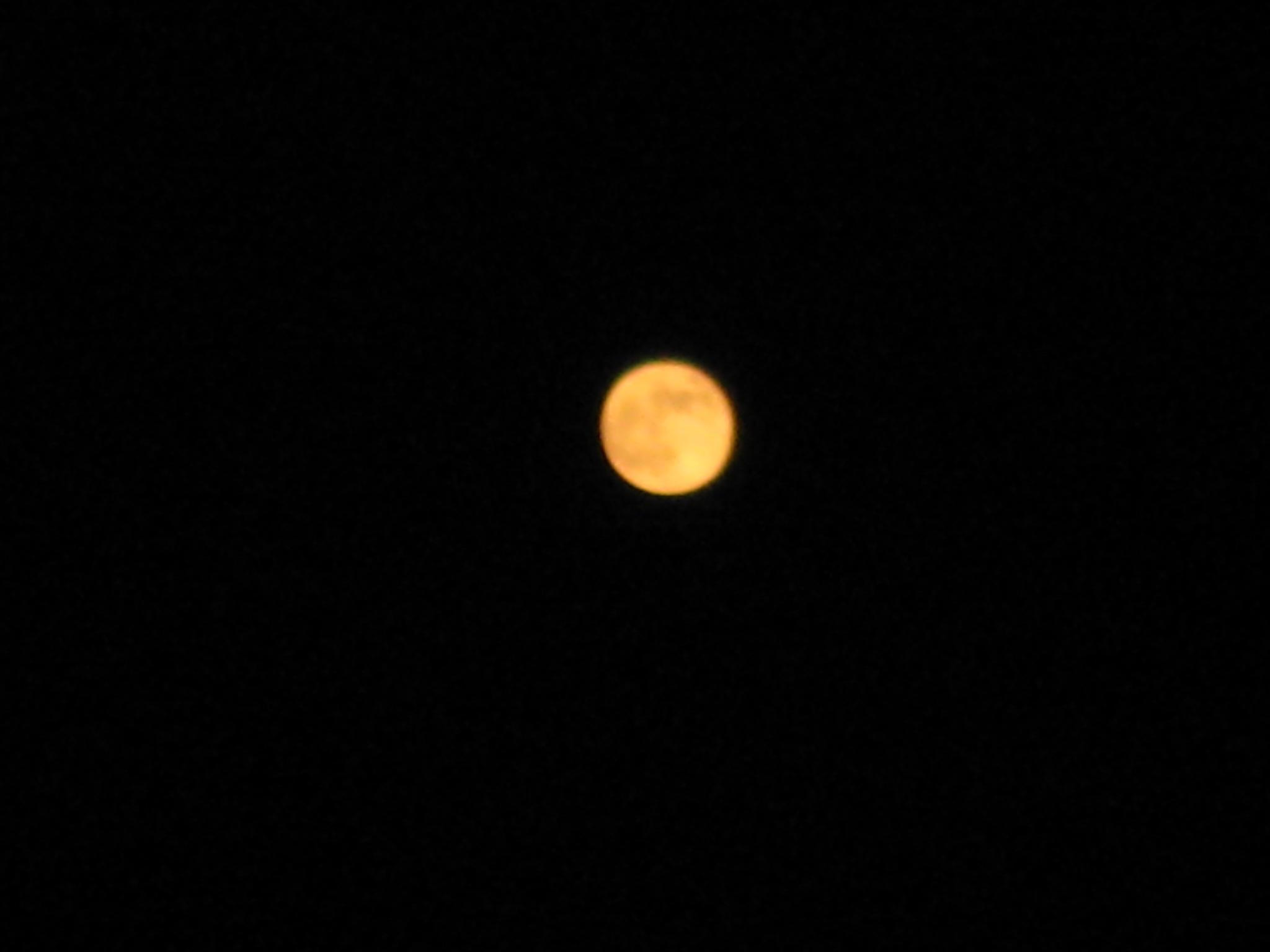 太陽と月のコラボ***_e0290872_6122281.jpg