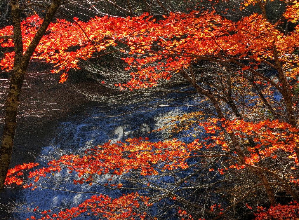 恵庭渓谷 白扇の滝_a0160581_14541121.jpg