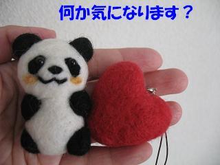 パンダ君のヒミツ・・・_d0225889_10574179.jpg