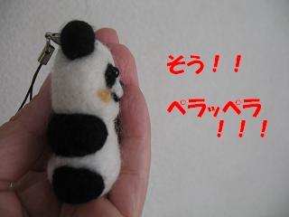 パンダ君のヒミツ・・・_d0225889_10574583.jpg
