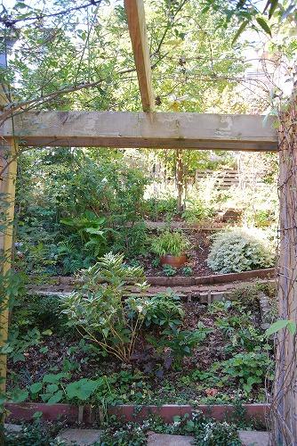 10月の庭…_c0124100_20572582.jpg