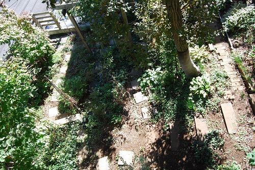 10月の庭…_c0124100_2058558.jpg