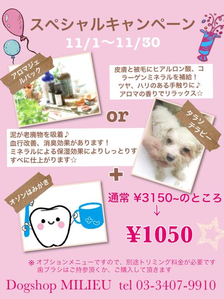 new エステメニュー!!_d0060413_2041762.jpg