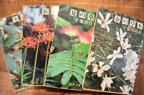 植物新入り 11・1_d0263815_1625080.jpg