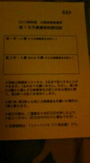 緑の党・第一次予備選スタート(投票用紙)_e0094315_2144487.jpg