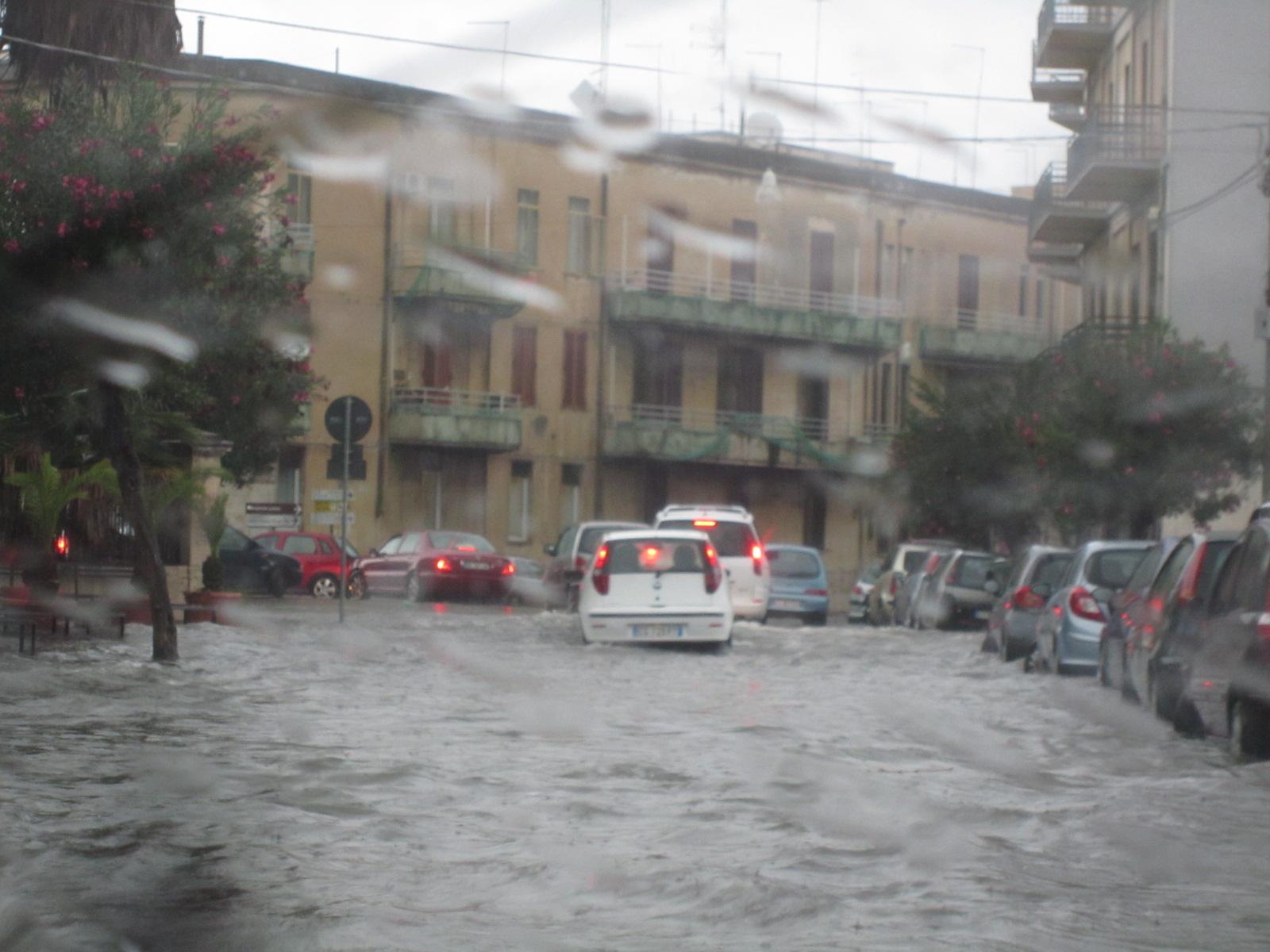 またまた大雨でーーす バゥ_d0084229_11174168.jpg