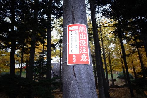 連日の西岡公園で熊注意。_c0051132_19532528.jpg