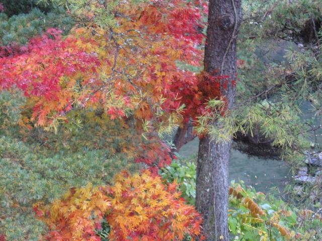 秋の小諸の展示会・・・おまけのお楽しみ_f0180433_1917911.jpg