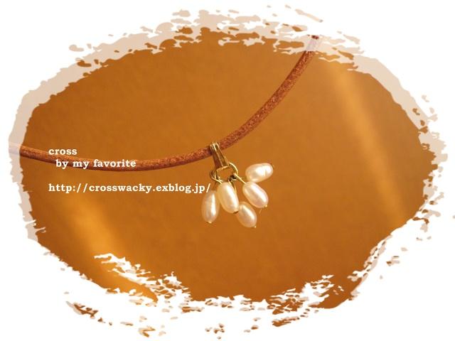 ネックレスと布買い記録_b0158137_1741732.jpg