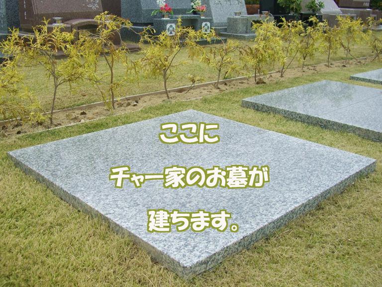 b0279153_202057100.jpg