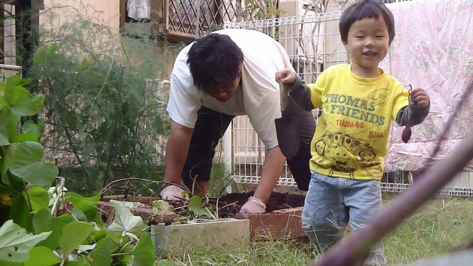 平成24年10月30日 お庭の芋掘り_c0155364_027218.jpg