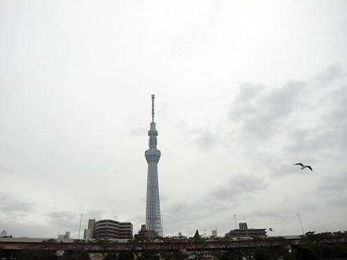 川俣東京3部作クルージングツアー・3-2_c0189970_92457.jpg