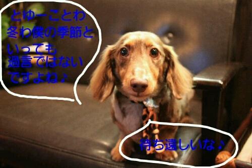 b0130018_1818453.jpg
