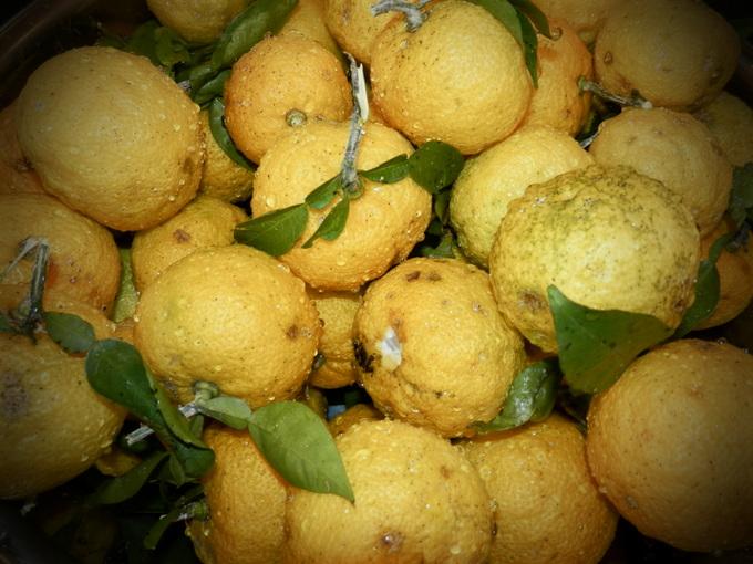 2012自然農「柚子jam」作り☆_a0125419_8114526.jpg