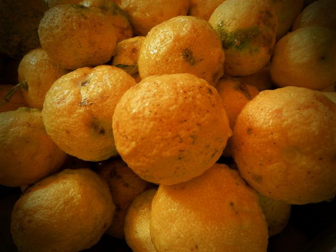 2012自然農「柚子jam」作り☆_a0125419_8125710.jpg