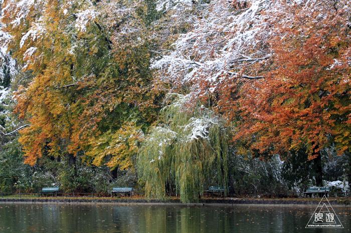 279 Kleinhesseloher See ~ミュンヘンの都市公園にて~_c0211532_065954.jpg