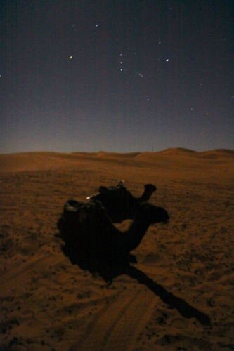 Night Camp in the Sahara Desert_d0010432_20182667.jpg