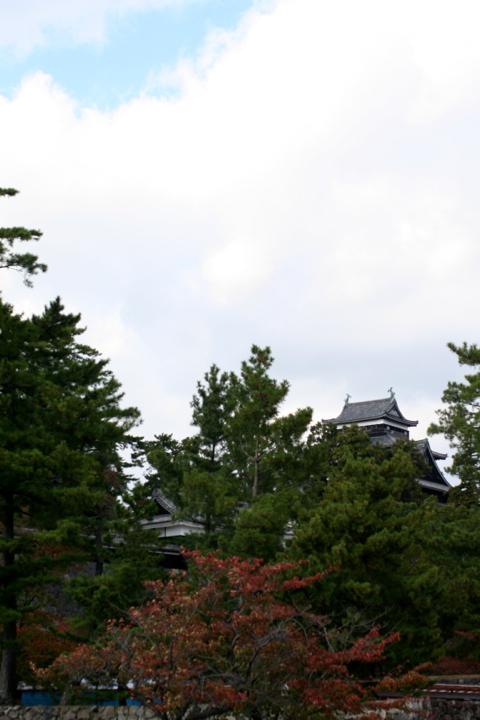 2012  秋 松江城 _d0004651_10303525.jpg