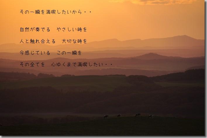 b0152416_1614653.jpg