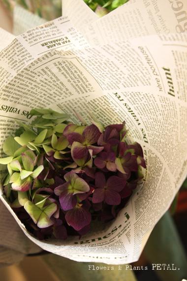 明日の花たち_d0157716_1862790.jpg