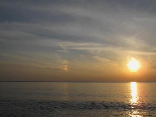 秋谷海岸 (おまけ写真)_d0150720_650790.jpg
