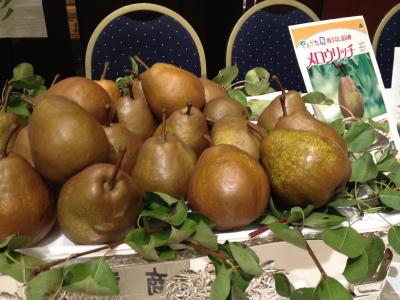 ++東京で山形伝統野菜に出会ったぁ〜〜〜++_e0140921_8494728.jpg