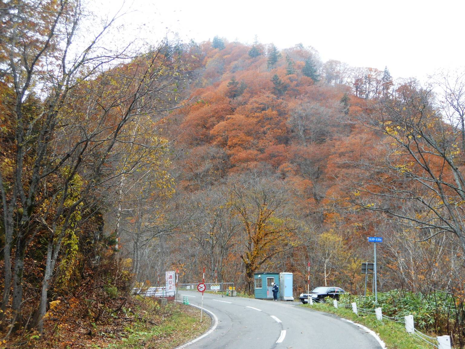 1856) 札幌定山渓付近の紅葉_f0126829_12152291.jpg